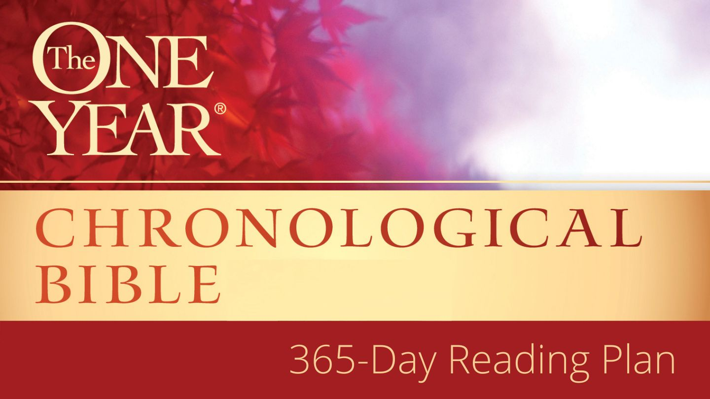 The One Year® Chronological Bible - Gain a better