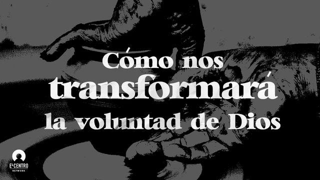 Cómo nos transformará la voluntad de Dios