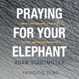 Praying for your Elephant - Pagdarasal nang May Lakas ng Loob