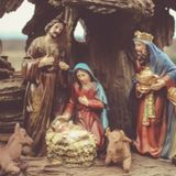 Meditations From The Manger