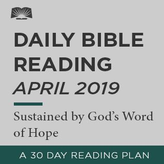 Bible in One Year 2019 - This plan takes readers through the