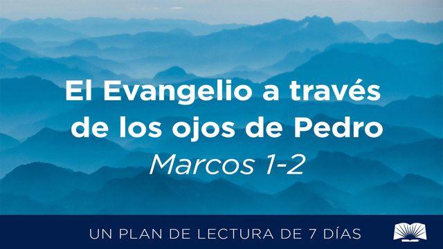 El Evangelio A Través De Los Ojos De Pedro