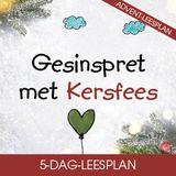 Gesinspret met Kersfees deur Ewald & Beatrix van Rensburg