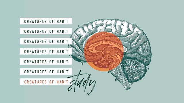 Creatures Of Habit: Study