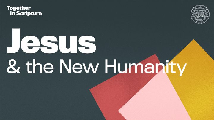 Together in Scripture | Jesus & the New Humanity