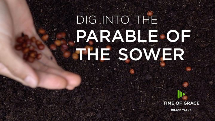 Dig Into The Parable Of The Sower