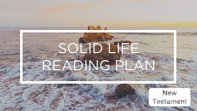 "Solid Life ""New Testament"" Reading Plan"