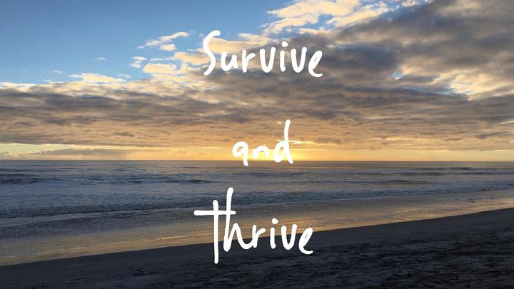 Divorce To Healing: Survive And Thrive