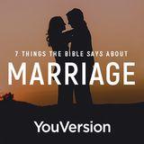 7 Hal yang Alkitab Katakan Tentang Pernikahan