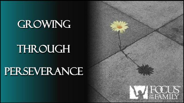 Growing Through Perseverance